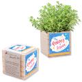 Wooden Planter Kit